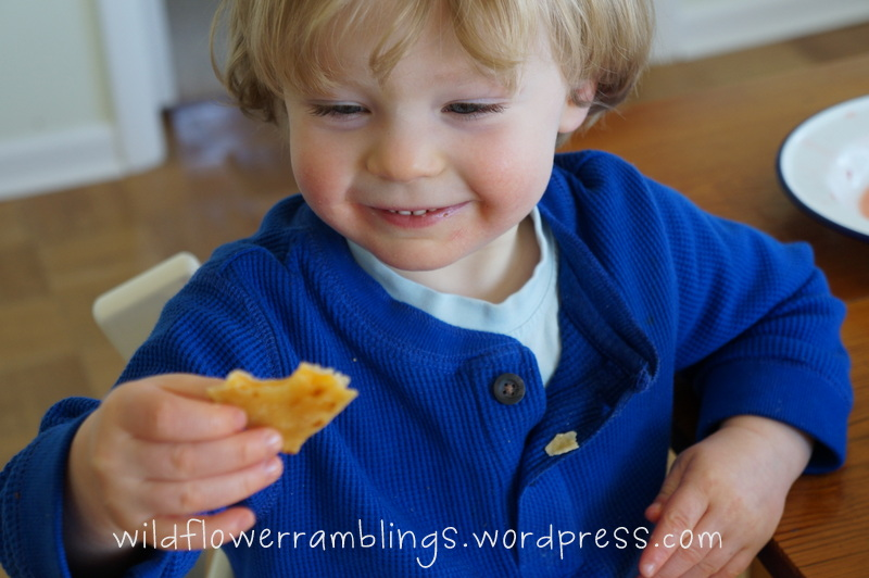 wordless wednesday: learning shapes withquesadillas